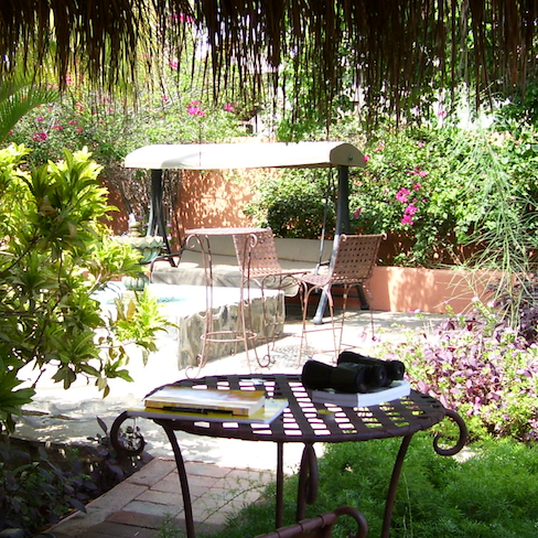patio at Las Flores Posada in Todos Santos, my writing notebook on the table