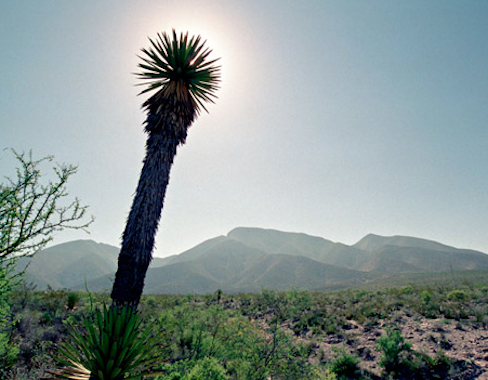 Desert and mountains copyright Tommy Huynh