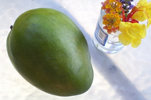 green mango with tiny vase of mixed blooms beside it