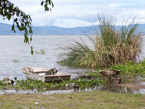 Shore of lake, old rowboat and wheelbarrow