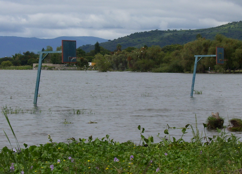 basketball court submerged in the lake