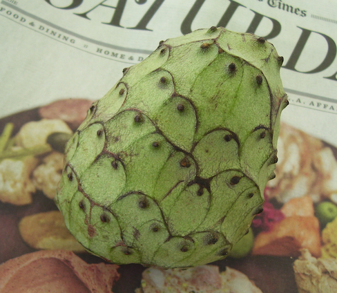 cherimoya sitting on the Saturday section of the L.A.Times