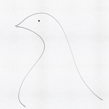 two black lines of a dove