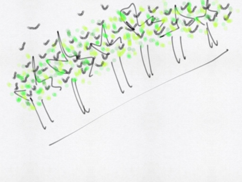 line of squiggles, trees and leaves and grackles